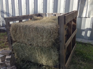 Hay Bin for Composting
